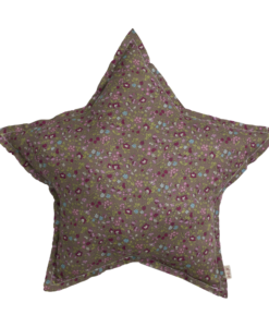 star-cushion-p126-cut-out-png